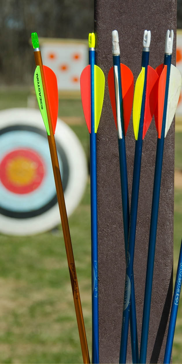Arrows in pole-mounted quiver with target in background