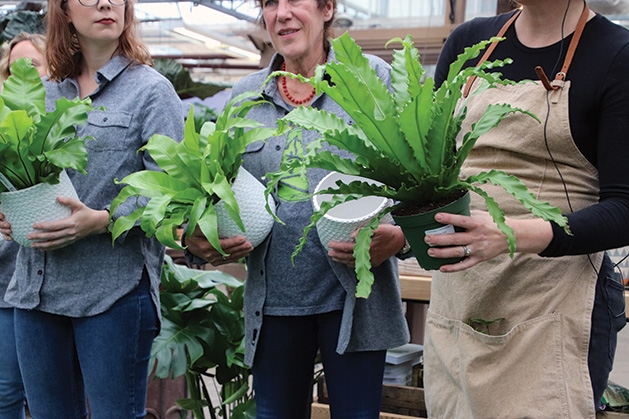 Maylen Anthony, Laura DeJongm and Jessie Jacobson at Tonkadale Greenhouse's houseplant runway show