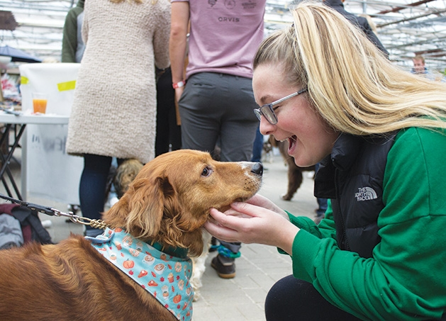 A woman pets a dog at Tonkadale Greenhouse's Biscuits & Blooms event.