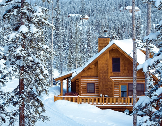 A cabin in the snowy woods.