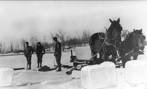 Workers harvest ice from Lake Minnetonka, lifting it onto a horse-drawn wagon.