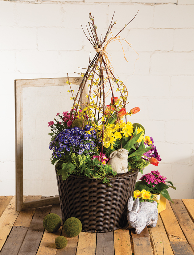A container garden by Gardens by Lynn