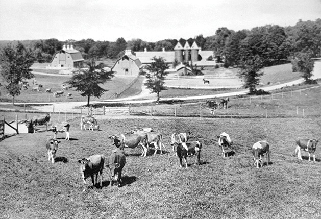 An old photograph of Boulder Bridge Farm, a gentleman's farm on Lake Minnetonka once owned by the Dayton family.