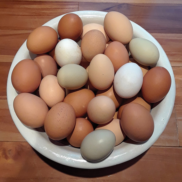 A bowl of eggs for Easter