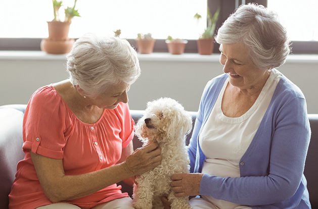 Two senior women play with a dog at Lake Minnetonka Shores, voted Best Senior Living Residence in the Best of Lake Minnetonka 2019 readers' choice survey.