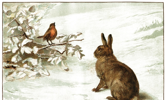 An illustration of a rabbit and a bird in winter.