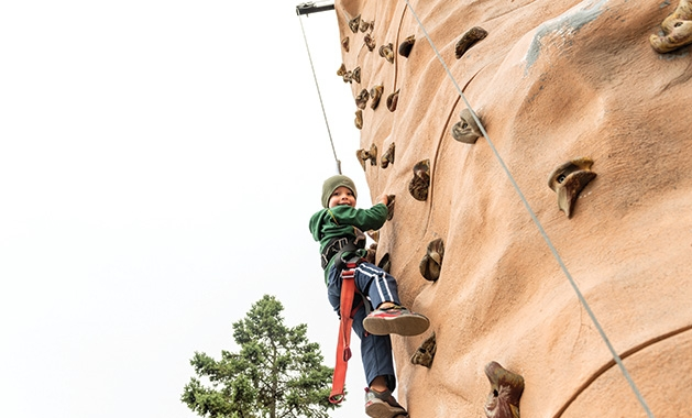 A boy climbs a rock wall at the St. David's Center Get Out and Grow fall festival.